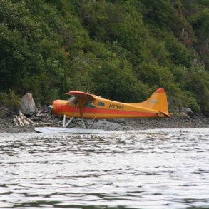 Pumpkin Beaver Float Plane