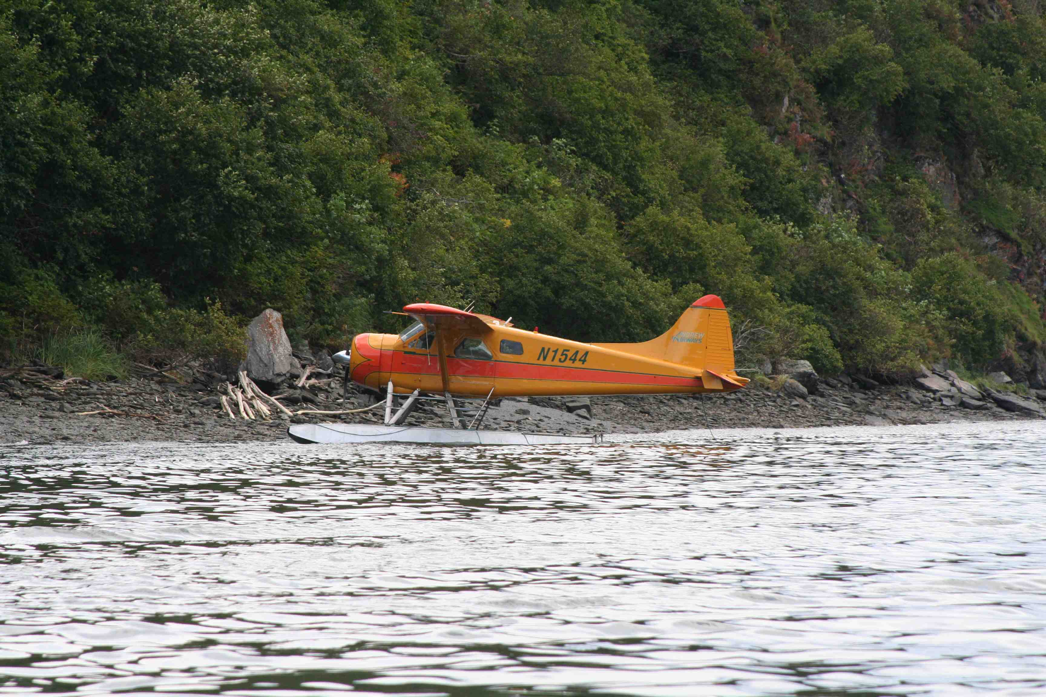 Pumpkin Beaver Float Plane