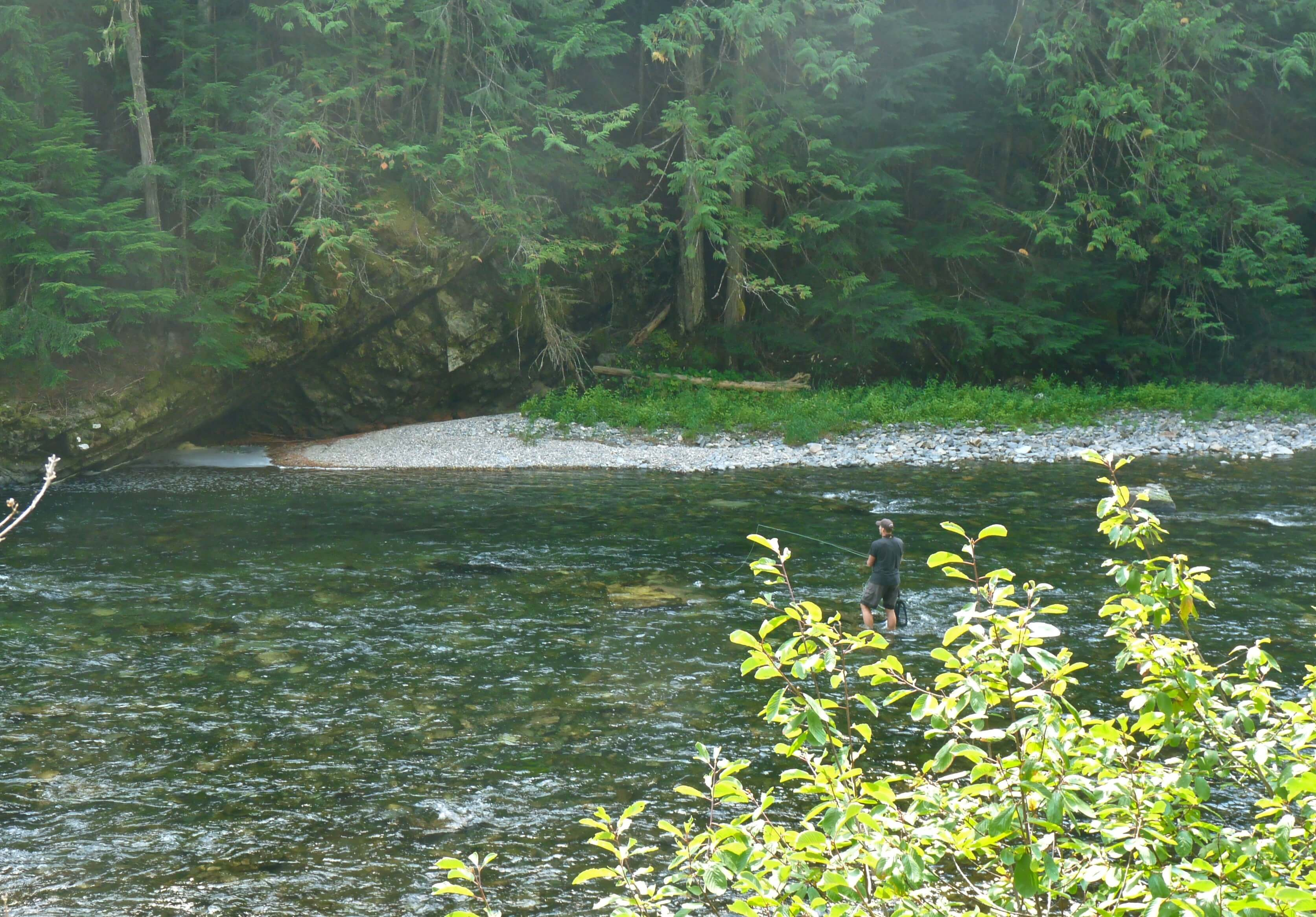Change fly fishing tactics to fool reluctant trout for St joseph river fishing