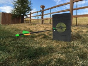 practice bow hunting
