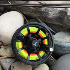 echo ion fly reel review