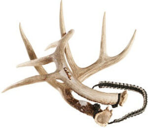 This deer hunting gift idea photo shows the Cabela's Real Rack Rattling Antlers.