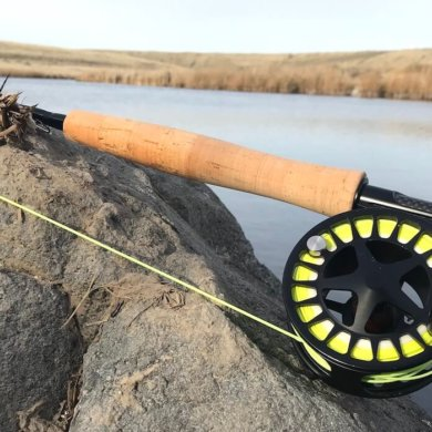 This photo shows the Cabela's Rogue Fly Rod on a rock near a creek.