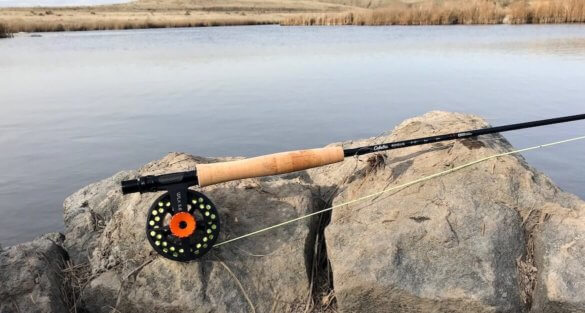 This photo shows the Cabela's Rogue Fly Rod with the Cabela's WLx Fly Reel combo on a rock on a creek.