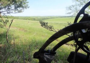 This photo shows a hen decoy, a Nebraska field and part of a compound bow.