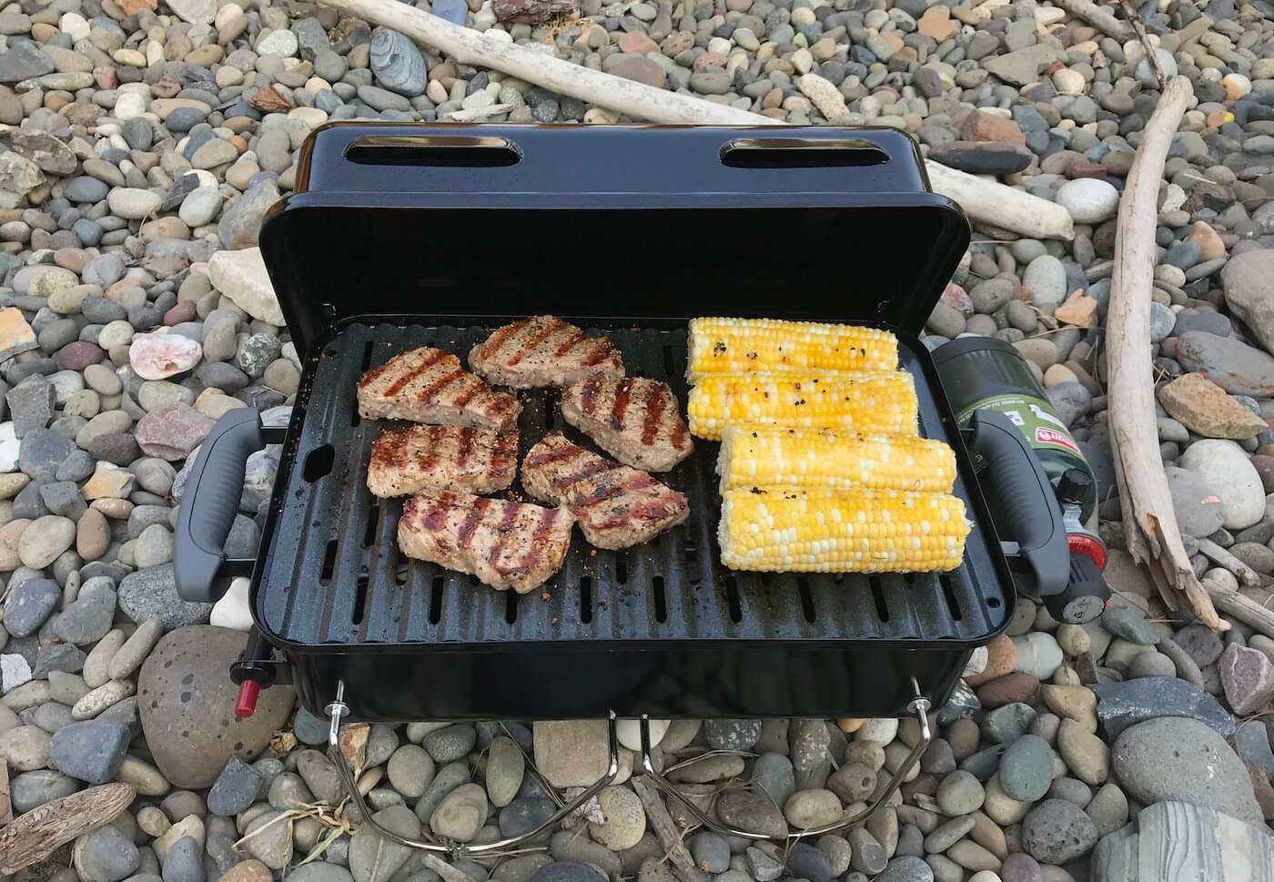 weber go anywhere gas grill review man makes fire. Black Bedroom Furniture Sets. Home Design Ideas