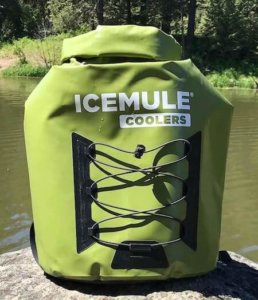 This camping gear gift photo shows the ICEMULE Pro Backpack Cooler.