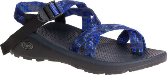 This photos shows the men's Chaco Z/Cloud 2 sandal.