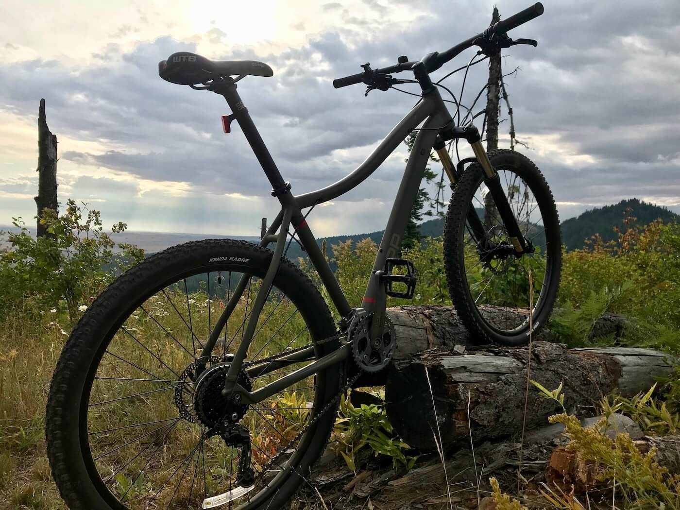 This review photo shows the REI Co-op Cycles DRT 1.2 mountain bike outside.