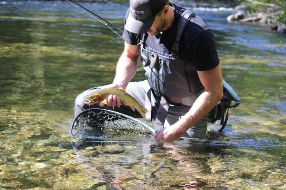 This photo shows the author testing and reviewing the Patagonia Swiftcurrent Expedition Zip-Front Waders while fishing in Idaho on a river with a cutthroat trout.