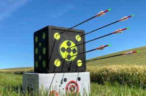 This photo shows the Rinehart Targets RhinoBlock Archery Target with arrows in it.