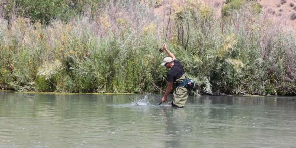 This photo shows the author wearing waders for beginners while fishing in a river.