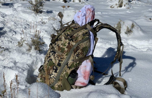 This photo shows the Mystery Ranch Sawtooth 45 hunting backpack with an elk quarter.