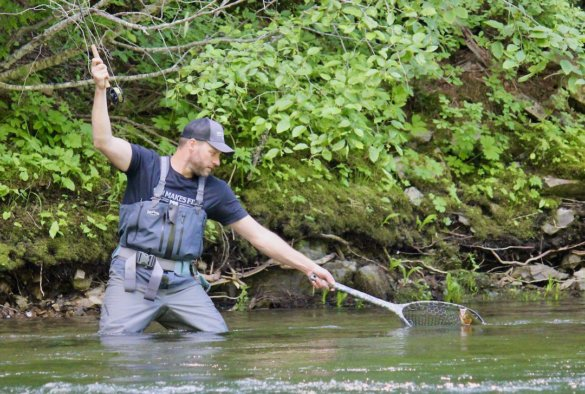 This photo shows the author netting a trout on a river while testing fly fishing nets and fly fishing gear.