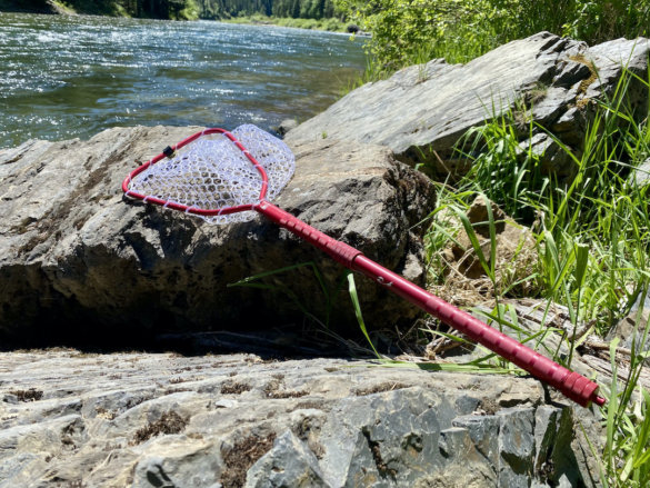 This photo shows the Rising Brookie Net with the Extend Net Handle installed.