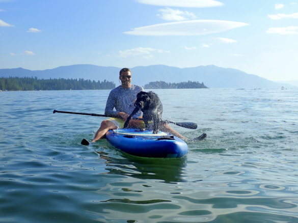 This photo shows the author testing the Outdoor Master 'Infinite' iSUP paddle board on a lake with a dog riding on the board.