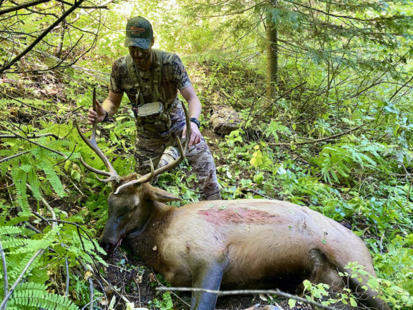 This photo shows the author wearing the UA Ridge Reaper Raider HD hunting pants near a harvested elk.